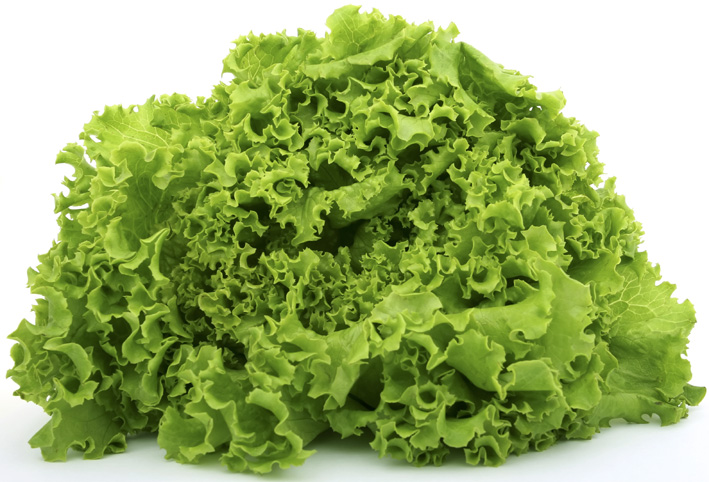 Salat Liersch Obst, Gemüse- und Kartoffelgroßhandel Frischezentrum Essen